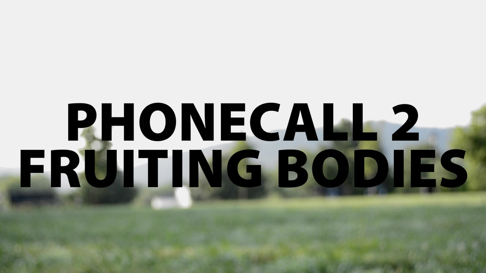 The Phonecall: #2—Fruiting Bodies