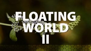Floating World II
