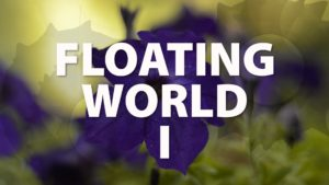 Floating World I