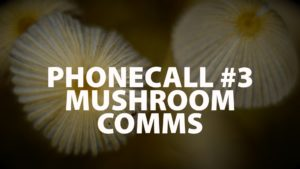 The Phonecall: #3 – Mushroom Comms