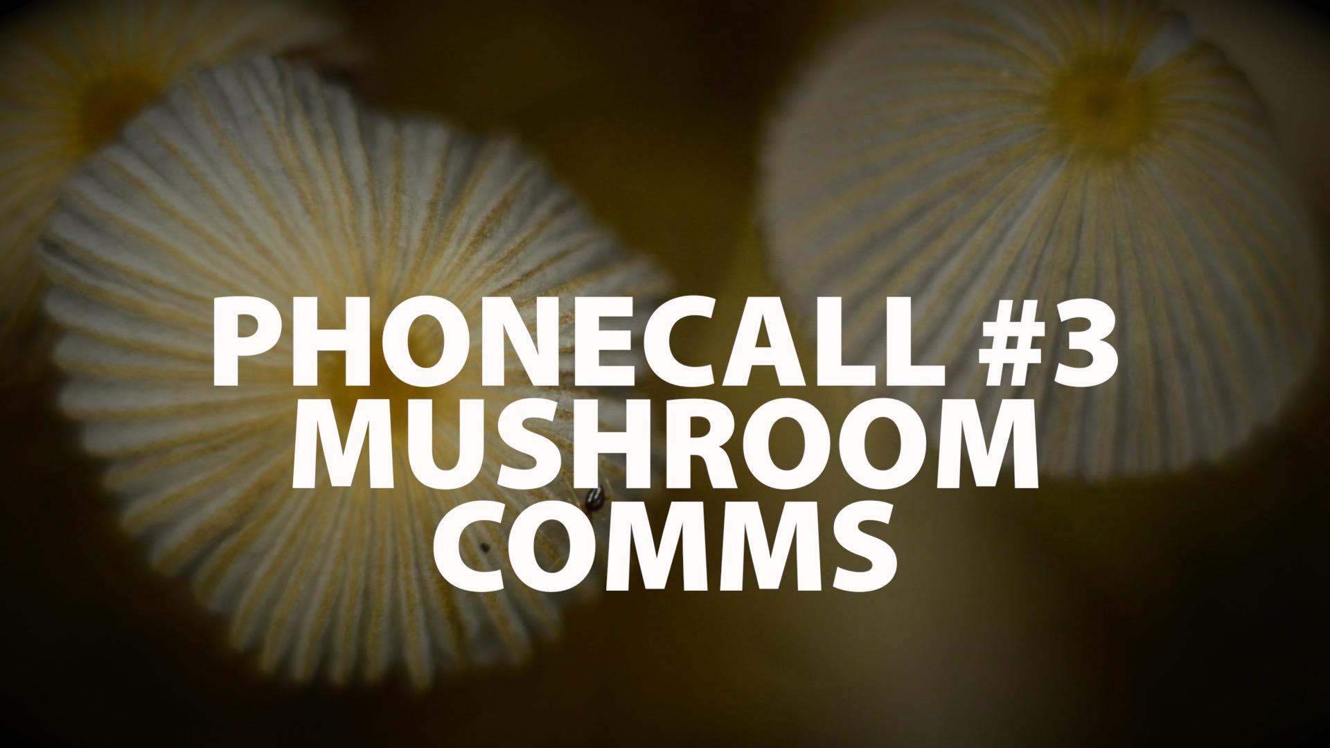 The Phonecall: #3 – Mushroom Comms