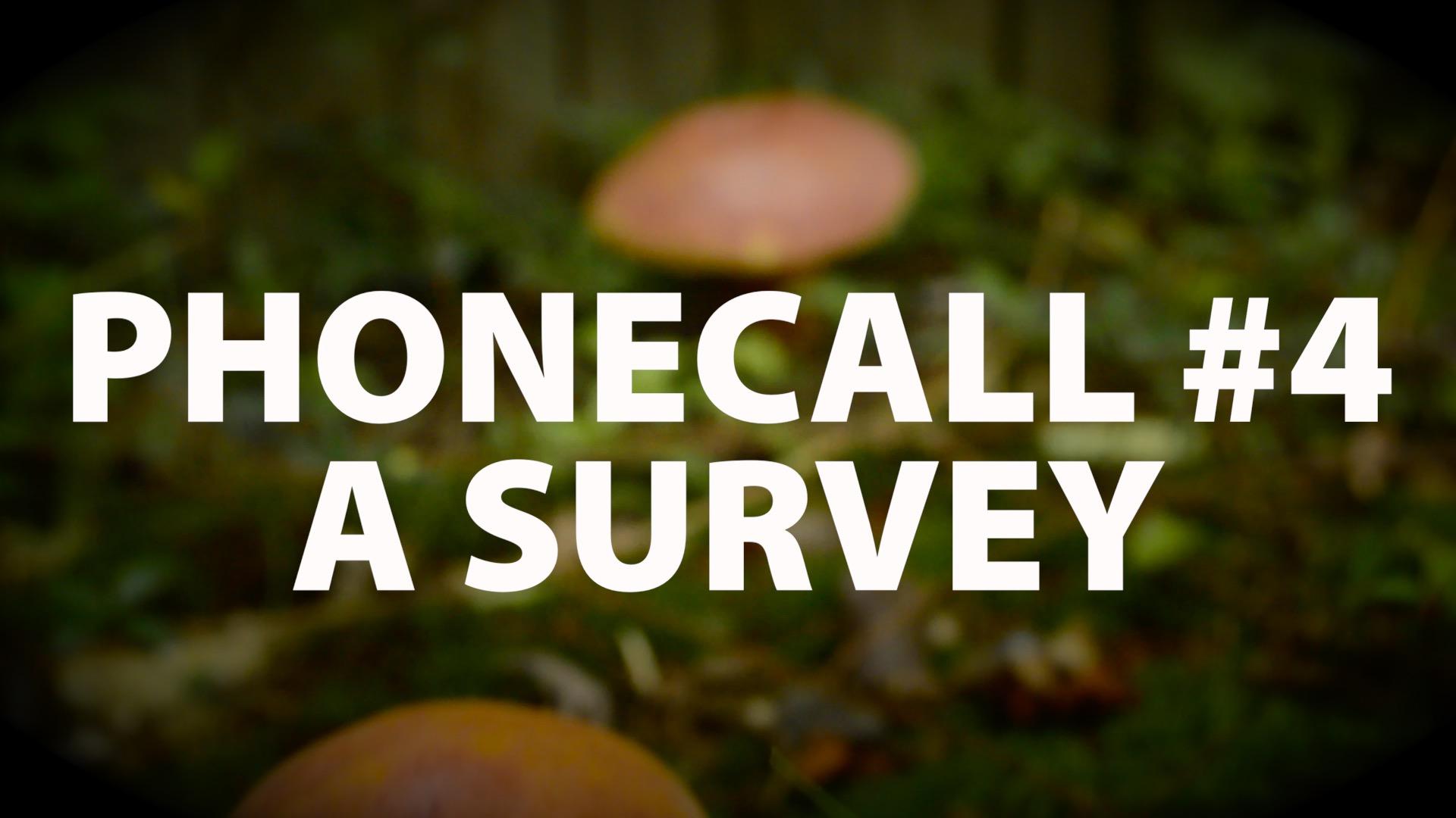 Phonecall: #4 A Survey