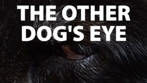 The Other Dogs Eye