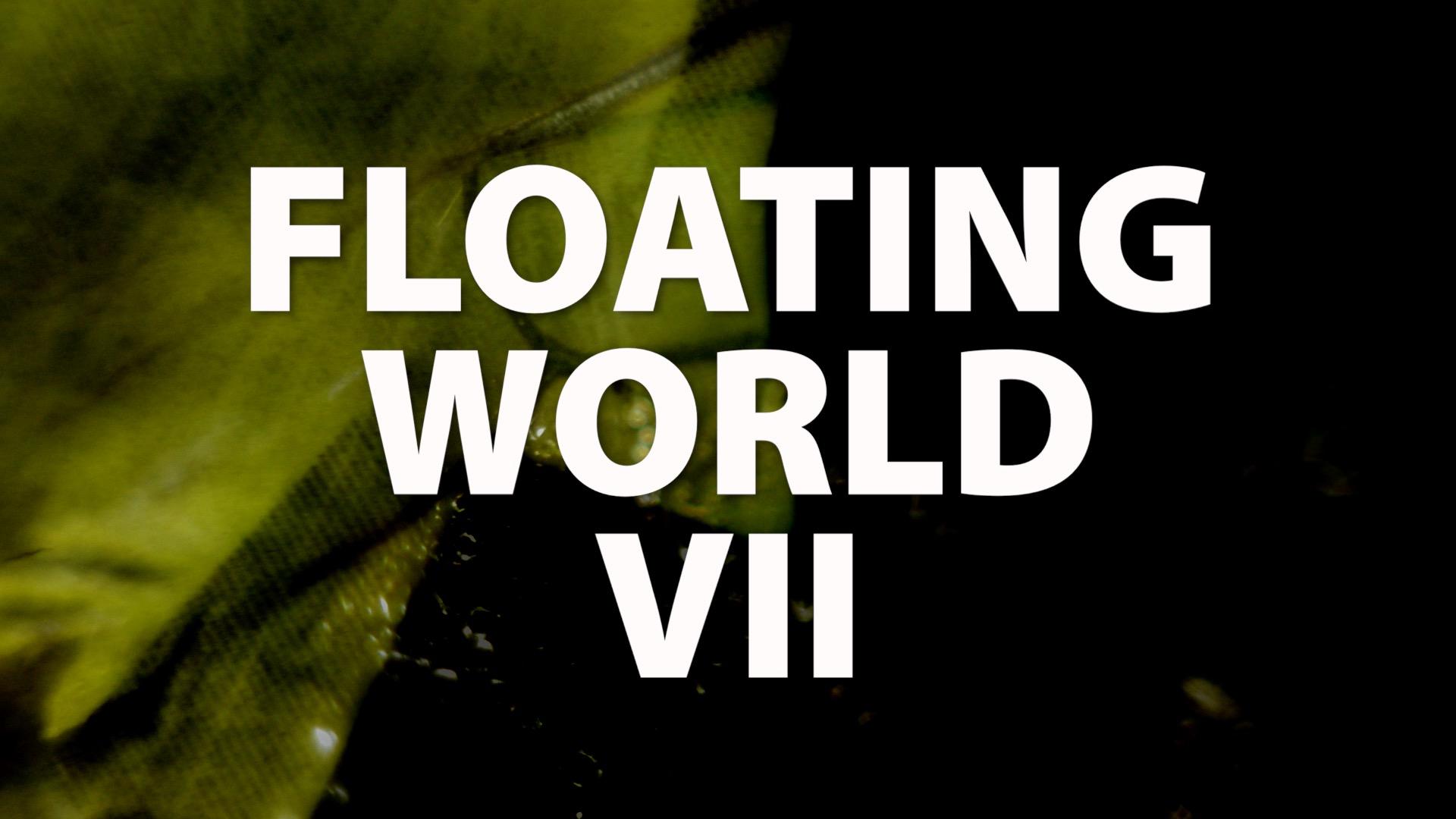 Floating World VII